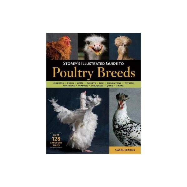 Storey's Illustrated Guide to Poultry Breeds - by Carol Ekarius (Paperback)